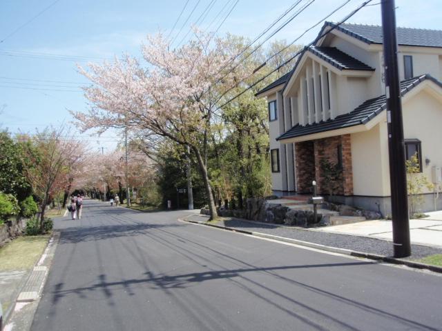 2010_545